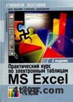 Практический курс по электронным таблицам MS Excel